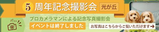 ペットホテルフィルウ 光が丘店5周年記念撮影会