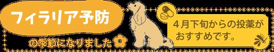 ペットのフィラリア予防