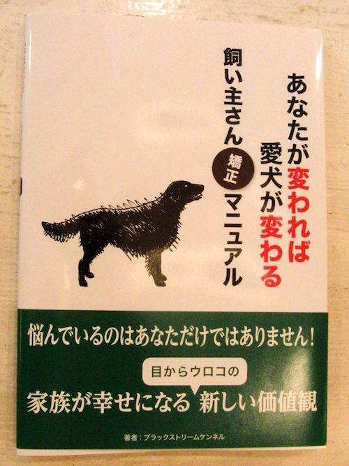 犬のしつけトレーニングの様子